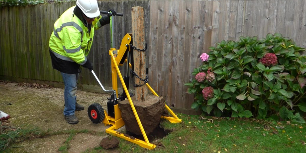 remove rotten fence posts